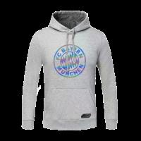 20/21 Bayren Munich Gray Hoody Sweater